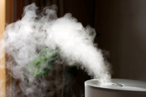 Cleveland Humidifiers